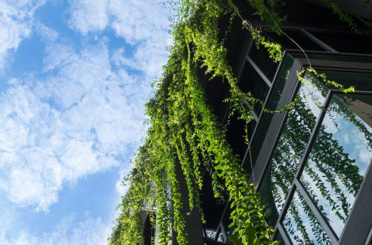 Grüne Gebäude als Beispiel für nachhaltiges Bauen